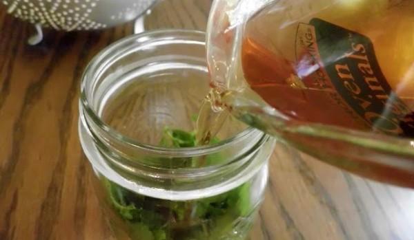 индийский лук рецепт настойки для суставов рецепт
