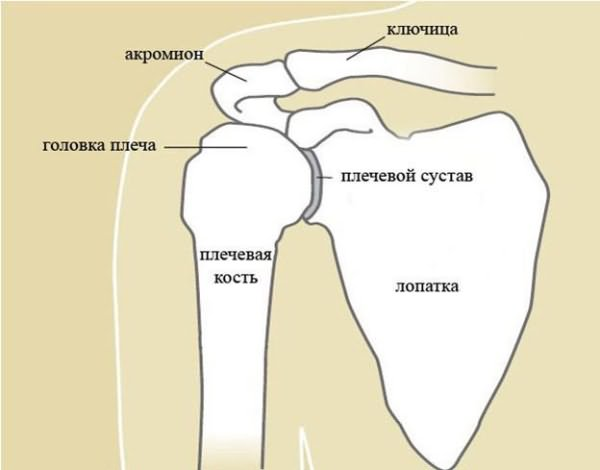 Как лечить отложение солей в плечевого сустава