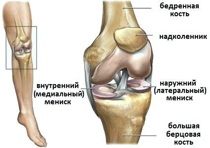 Выпот в полости коленного сустава блуждающая боль в суставах лечение