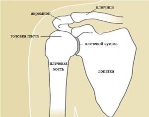 Изображение - Чем лечить отложение солей в плечевом суставе kakogo-lecheniya-trebuet-otlozhenie-solej-v-plechevom-sustave1-300x235